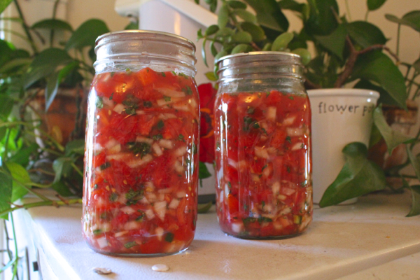 recipe-for-fermented-salsa