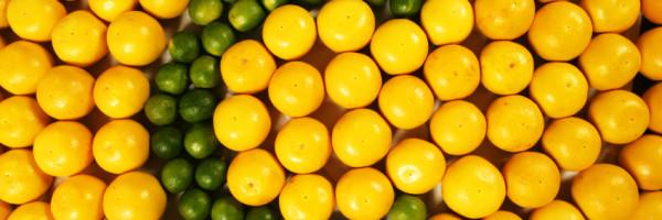The wonders of Vitamin C I.V
