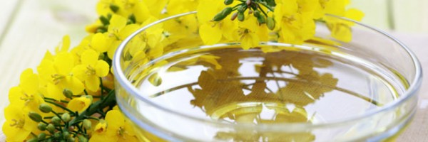Canola oil is the biggest hidden health 'danger' at the prepared food bar